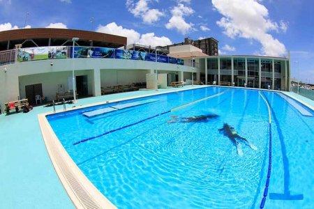ginowan_pool
