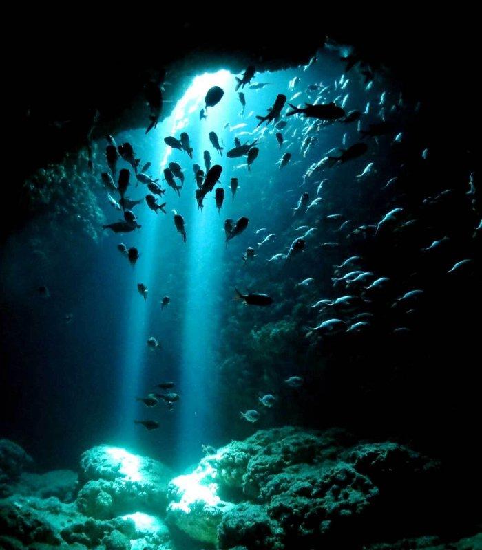 miyako_diving